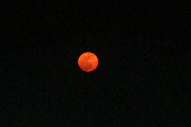 ブラッディーな月.jpg