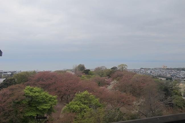 琵琶湖どこ?.jpg