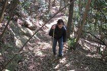 登山開始 (2).jpg